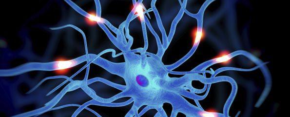 خلاصه کتاب روانشناسی فیزیولوژیک کالات